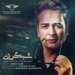 دانلود موزیک امیر تاجیک به نام شبگردی