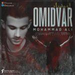 دانلود موزیک محمد علی به نام امیدوار