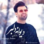 دانلود موزیک رضا محمدی به نام دیوانه دلبر