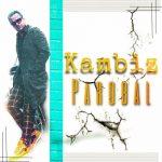 دانلود موزیک کامبیز به نام پروبال
