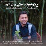 دانلود موزیک مجتبی صالح زاده به نام یکه سوار