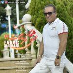 دانلود موزیک پرویز بابایی به نام عشق مگر چیست