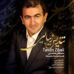 دانلود موزیک مصطفی محمدی به نام تندیس زیبایی