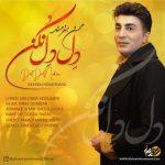 دانلود موزیک محسن هنرمند به نام دل دل نکن