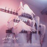 دانلود موزیک علی کاشانی به نام پری کجایی