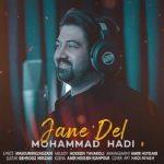 دانلود موزیک محمد هادی به نام جان دل