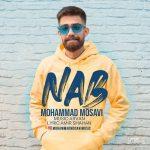 دانلود موزیک محمد موسوی به نام ناب