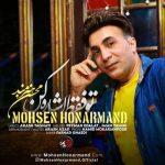 دانلود موزیک محسن هنرمند به نام تو فقط اشاره کن