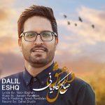دانلود موزیک صالح کاویانی به نام دلیل عشق
