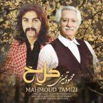 دانلود موزیک محمود تمیزی به نام گل یخ