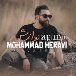 دانلود موزیک محمد هروی به نام نوازش