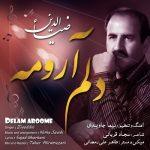 دانلود موزیک ضیاءالدین به نام دلم آرومه