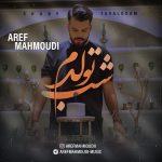 دانلود موزیک عارف محمودی به نام شب تولدم
