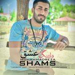 دانلود موزیک محمد رضا شمس به نام دلتنگ عشق