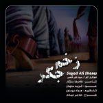 دانلود موزیک سید علی شمس به نام زخم جگر